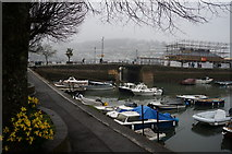 SX8751 : The Harbour, Dartmouth by Ian S