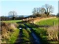 SP8011 : Bridleway, Bishopstone by Andrew Smith