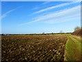 SP8016 : Farmland, Quarrendon by Andrew Smith