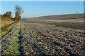 SP8207 : Farmland, Kimble by Andrew Smith
