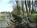 TQ7850 : Footpath alongside an earthwork by Marathon