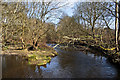 SD7311 : Bradshaw Brook above the weir    by Ian Greig