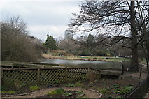 TQ2979 : View of St. James's Park Lake from the path near Horse Guards Parade by Robert Lamb