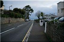 SX9265 : St Albans Road, Babbacombe by Ian S