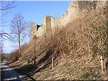 SO5074 : Ludlow Castle Scene by Gordon Griffiths
