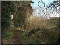 SJ6452 : Nantwich: footpath on the edge of Kingsley Village by Jonathan Hutchins