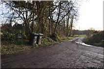 SS8526 : North Devon : Small Track by Lewis Clarke