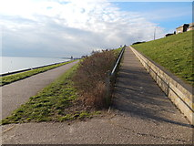 TM2531 : Path up to Marine Parade by Hamish Griffin