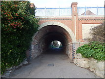 TM2531 : Arch under Marine Parade (from beach) by Hamish Griffin