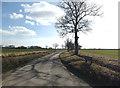 TM2081 : Ingram's Road, Brockdish by Adrian Cable