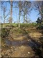 SX2787 : Ford near Coombekeale by Derek Harper