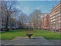 TQ3081 : Queen Square Gardens, London WC1 by Julian Osley