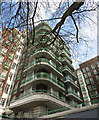 TQ2781 : Balconies & Branches by Des Blenkinsopp