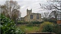 TA0322 : Parish Church of  Saint Mary the Virgin,  Barton-on-Humber by Chris Morgan