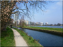 TQ3287 : The New River by the Woodberry Down Estate by Marathon