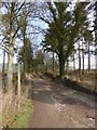 NY5625 : Driveway to Chatburn by Oliver Dixon