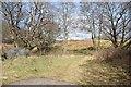 NR8495 : Field track by Patrick Mackie