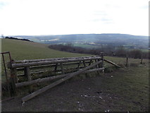 ST8412 : Hanford: unusual stile near the top of Hambledon Hill by Chris Downer