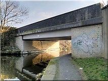 SD8538 : Leeds and Liverpool Canal, Bridge#141C, Reedyford Bridge by David Dixon