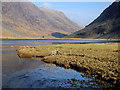 NN1356 : Outflow from Loch Achtriochtan, Glen Coe by sylvia duckworth