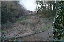 SX9364 : Path down to Anstey's Cove by Ian S
