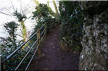 SX9364 : Southwest Coast Path at Anstey's Cove Road by Ian S