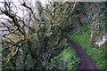 SX9464 : Southwest Coast Path at Black Head by Ian S