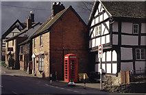 SO3958 : Houses in Pembridge by Stephen McKay