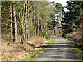 NZ2242 : Deerness Valley Railway Walk near Ushaw Moor by Trevor Littlewood