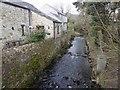 SK1583 : Peaks Hole Water Castleton by Steve  Fareham