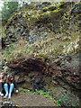 SO9189 : East Quarry, Barrow Hill, Pensnett – dolerite intrusion into Etruria Marl by Robin Stott