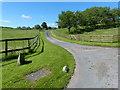 SO7363 : Driveway to The Birche by Mat Fascione