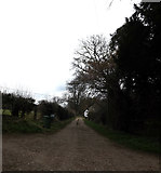 TM2384 : Rouse's Lane, Starston by Geographer
