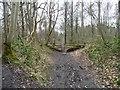 SE4135 : Public footpath, Parlington Hollins by Christine Johnstone