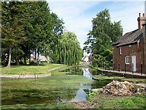 TF0919 : Keeping the river clean at Bourne, Lincolnshire by Rex Needle