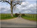 SP7511 : Narrow lane off Aylesbury Road, Cuddington by Robin Webster