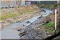 J3674 : The Connswater, Belfast - March 2015(1) by Albert Bridge