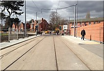 SK5236 : Tram tracks between the new interchange and Chilwell Road by David Lally