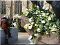 SK5804 : White roses on the Statue of King Richard III by Mat Fascione