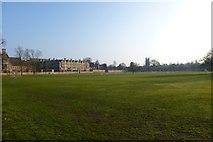 SP5105 : Merton Field by DS Pugh