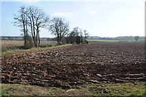 SO6630 : Arable land beside Kempley Brook by Philip Halling
