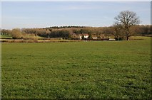 SO6628 : Daffodil Way, Kempley by Philip Halling