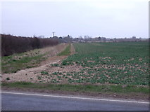 TF3686 : Crop field off Manby Road (B1200) by JThomas
