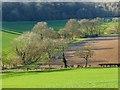 SU7390 : Farmland, Turville by Andrew Smith