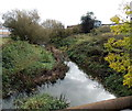 SP4640 : Cherwell downstream from Tramway Road, Banbury by Jaggery