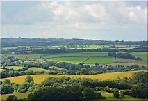 SS8928 : View over farmland near Chilcott, Somerset by Edmund Shaw