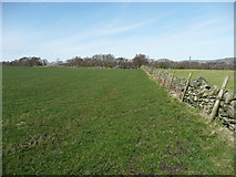 SE0722 : Elland FP05 alongside a wall by Humphrey Bolton