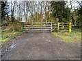 SJ9181 : Exit from Gibson Wood by David Dixon