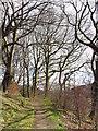 ST0391 : Footpath near Llwyncelyn by Gareth James