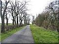 NZ4204 : Haggitt Hill Lane [2] by Christine Johnstone